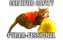 meetingagenda:general_safety_purr-fessional.png